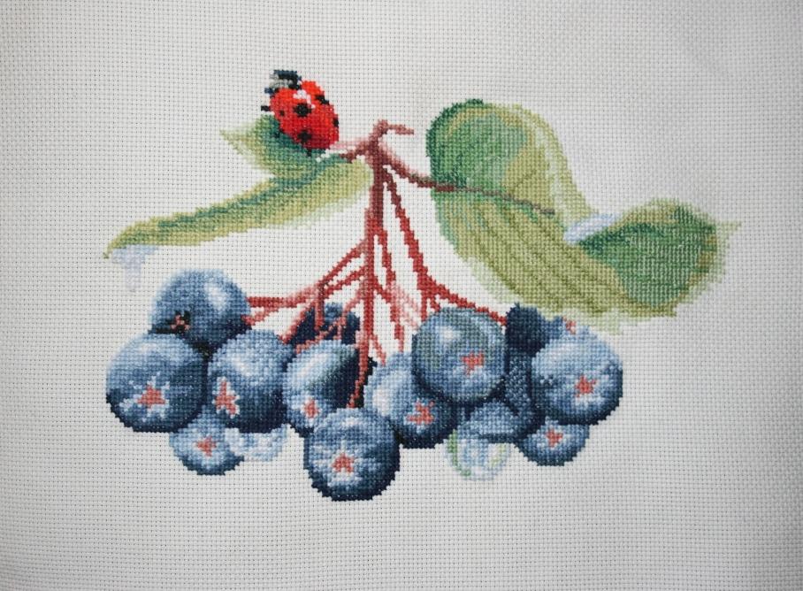 Вышивка_ягоды